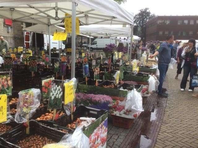 Bioflora - Käsemarkt Alkmaar Niederlande