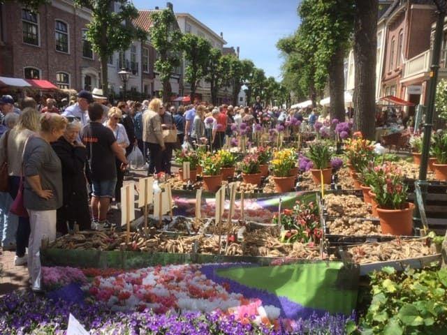 Bioflora - Sommermarkt Noordwijk