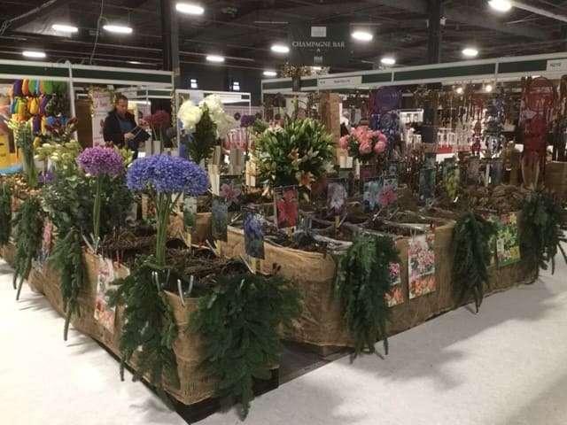Bioflora - Weihnachtsmarkt London
